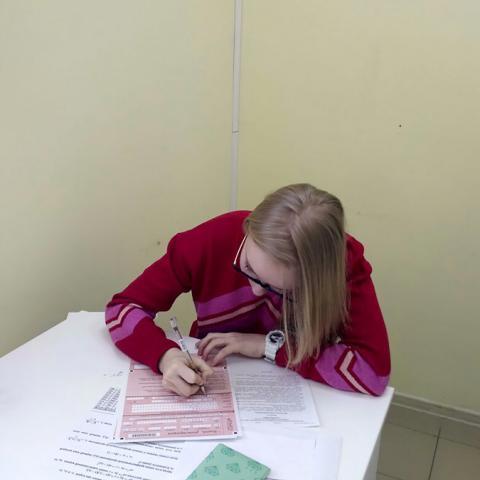 Подготовка к ЕГЭ по русскому языку, обществознанию, истории в Одинцово