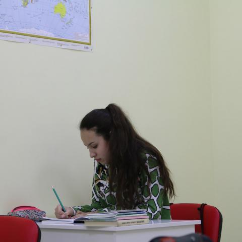 Подготовка к ЕГЭ по русскому языку, биологии, химии в Одинцово