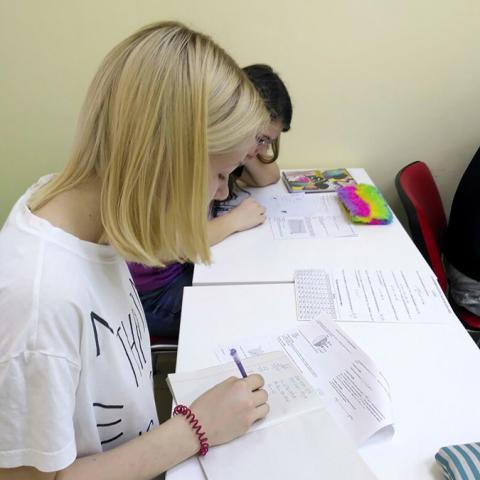 Подготовка к ОГЭ по русскому языку, биологии, химии в Одинцово